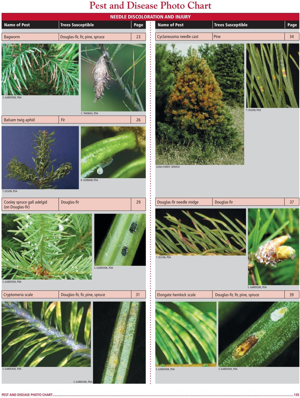 THOMAS, Balsam twig aphid Fir 26 USDA FOREST SERVICE Cooley spruce gall adelgid Douglas-fir 29 (on