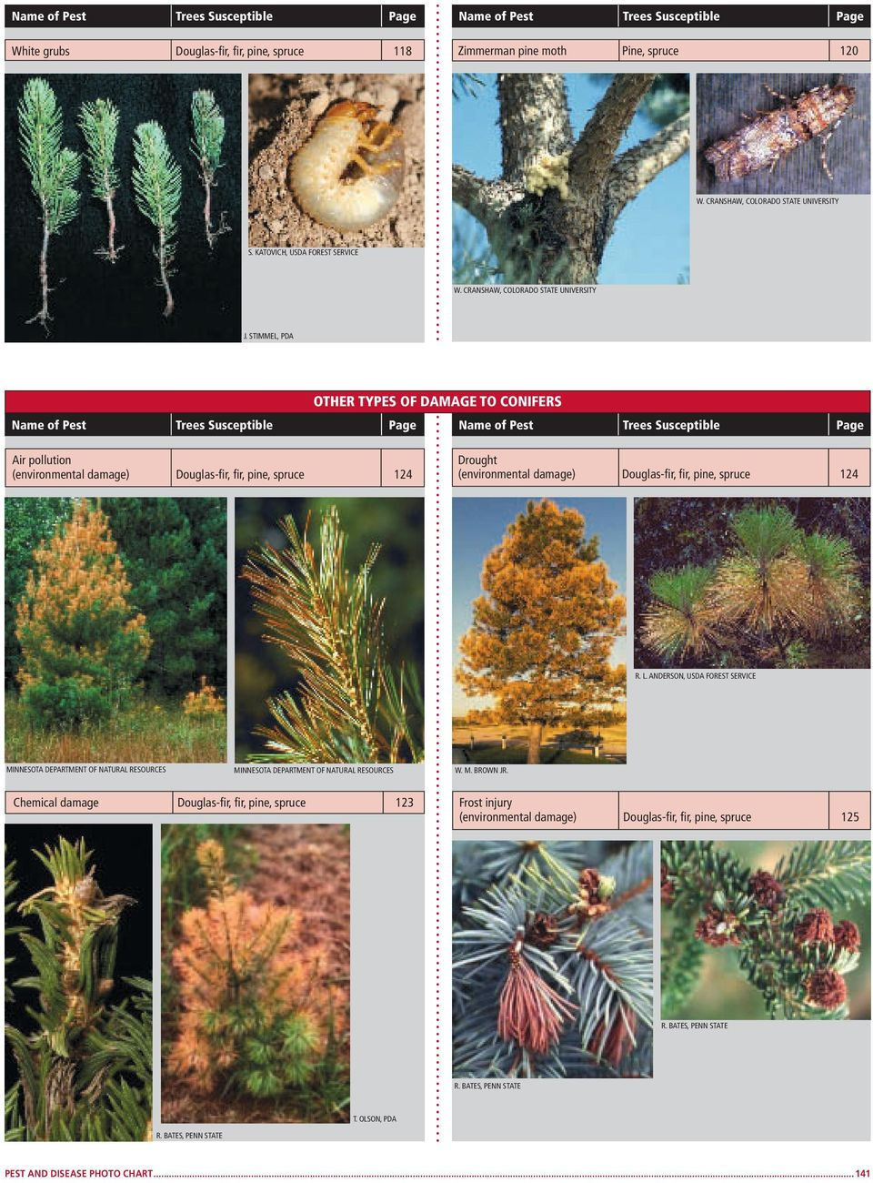STIMMEL, OTHER TYPES OF DAMAGE TO CONIFERS Air pollution (environmental damage) Douglas-fir, fir, pine, spruce 124 Drought (environmental damage) Douglas-fir, fir, pine, spruce 124 R.