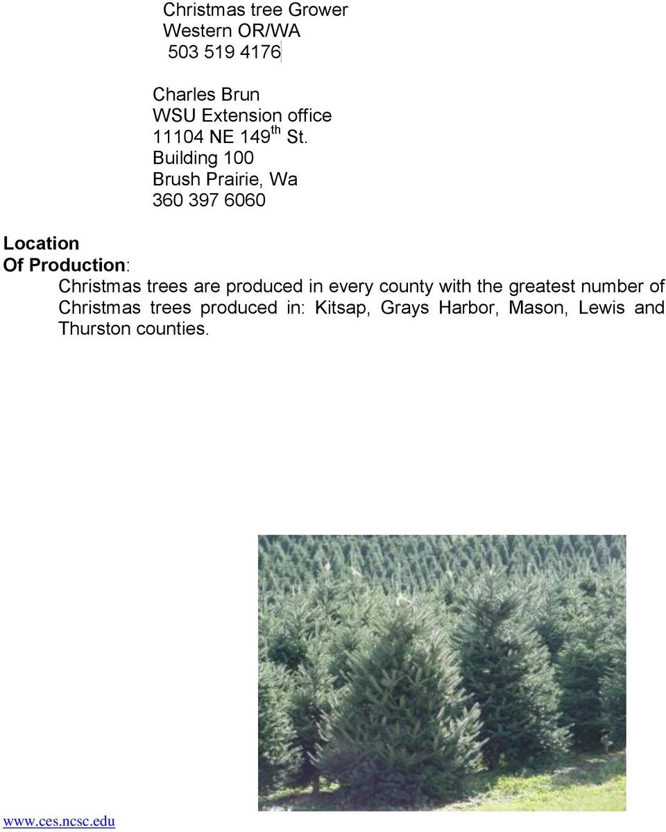 Building 100 Brush Prairie, Wa 360 397 6060 Location Of Production: Christmas trees