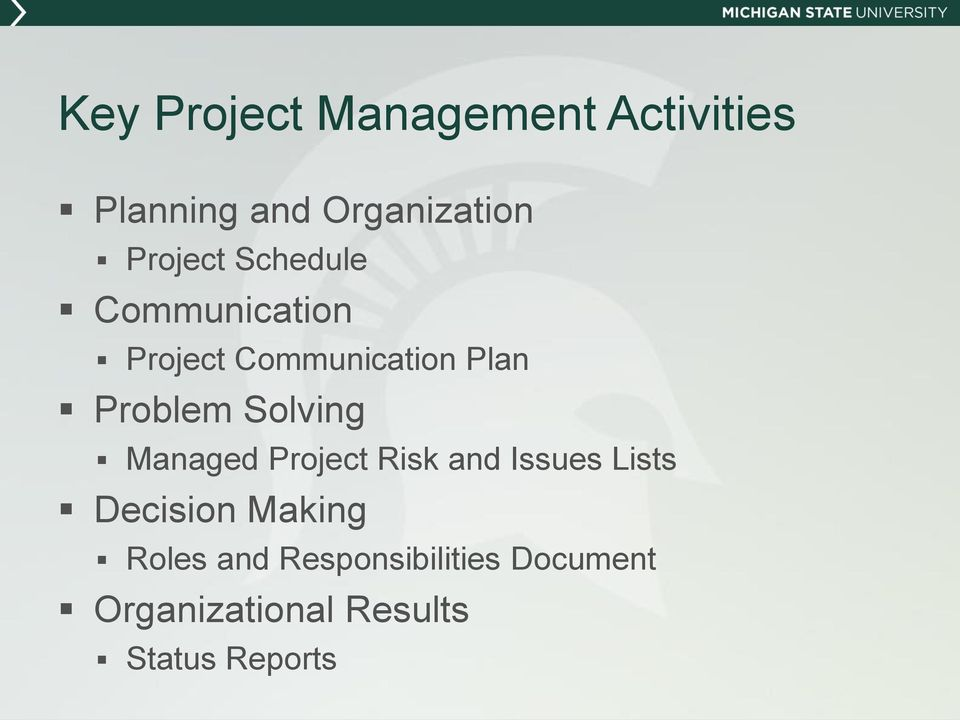 Solving Managed Project Risk and Issues Lists Decision Making