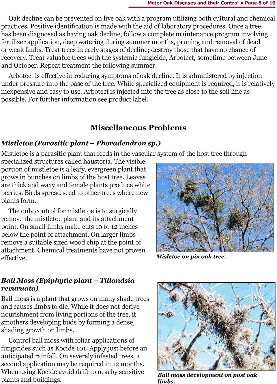 limbs. Treat trees in early stages of decline; destroy those that have no chance of recovery. Treat valuable trees with the systemic fungicide, Arbotect, sometime between June and October.