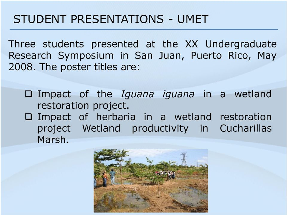 The poster titles are: Impact of the Iguana iguana in a wetland restoration