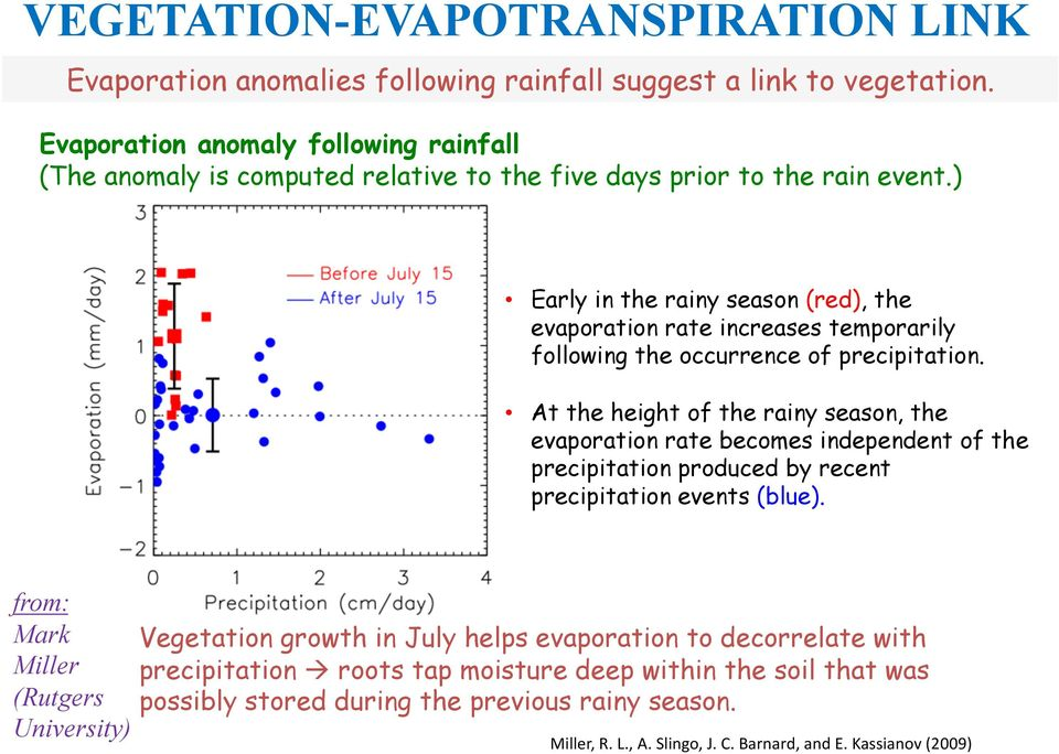 ) Early in the rainy season (red), the evaporation rate increases temporarily following the occurrence of precipitation.