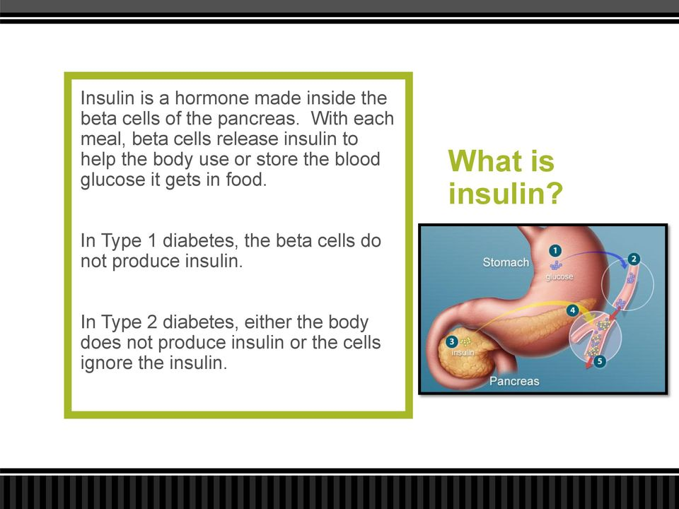 glucose it gets in food. What is insulin?