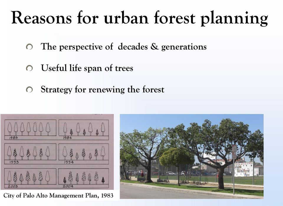 life span of trees Strategy for renewing