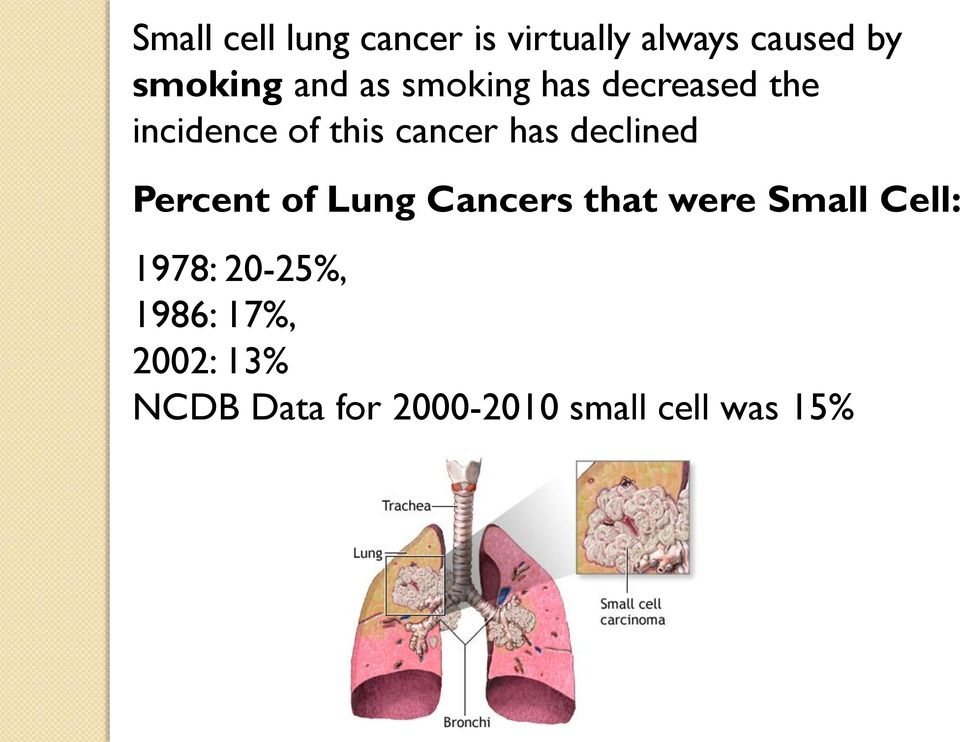 declined Percent of Lung Cancers that were Small Cell: 1978: