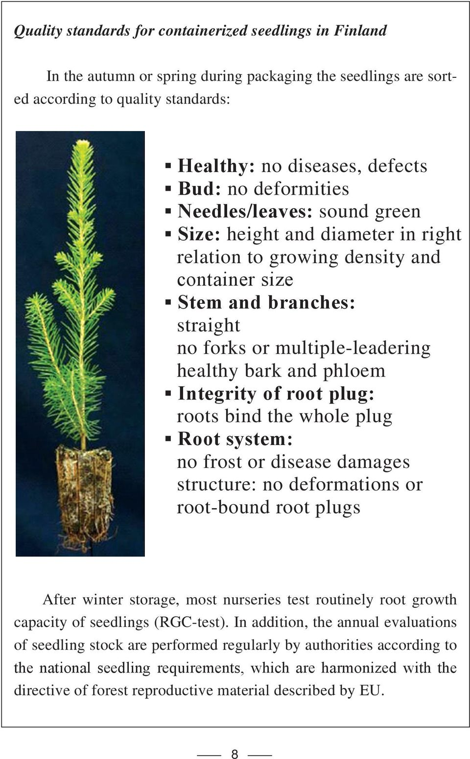 phloem Integrity of root plug: roots bind the whole plug Root system: no frost or disease damages structure: no deformations or root-bound root plugs After winter storage, most nurseries test