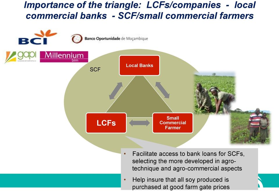 to bank loans for SCFs, selecting the more developed in agrotechnique and