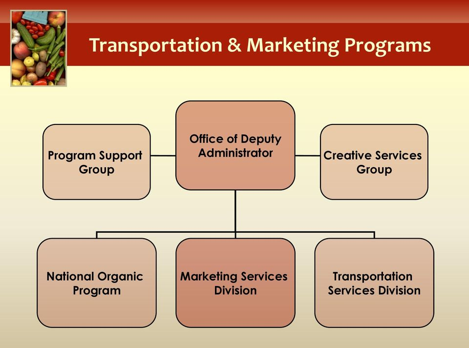 Creative Services Group National Organic Program