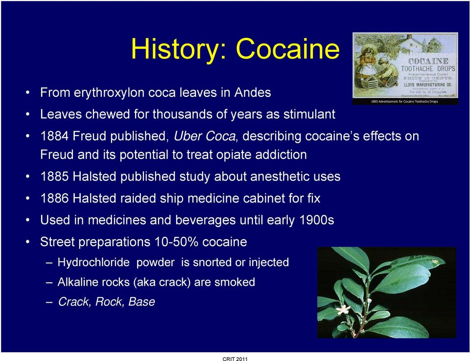 Stimulants: Cocaine and Methamphetamine - PDF