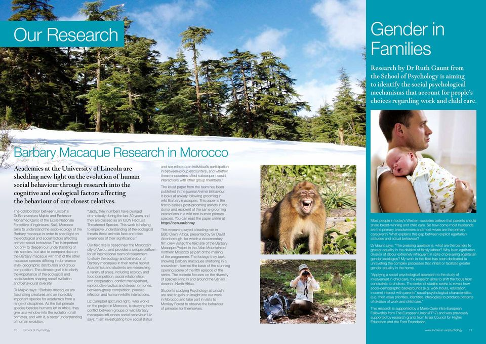 Barbary Macaque Research in Morocco Academics at the University of Lincoln are shedding new light on the evolution of human social behaviour through research into the cognitive and ecological factors