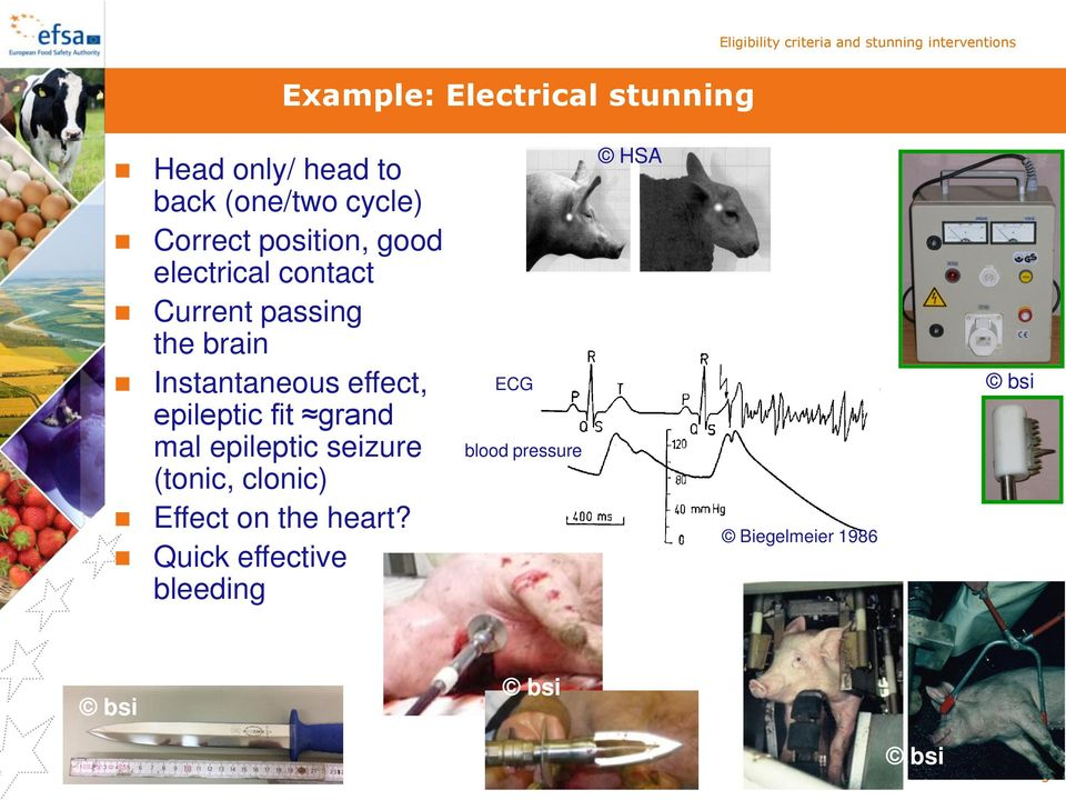 brain Instantaneous effect, epileptic fit grand mal epileptic seizure (tonic, clonic)