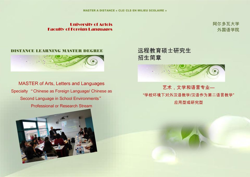 Chinese as Foreign Language/ Chinese as Second Language in School Environments Professional