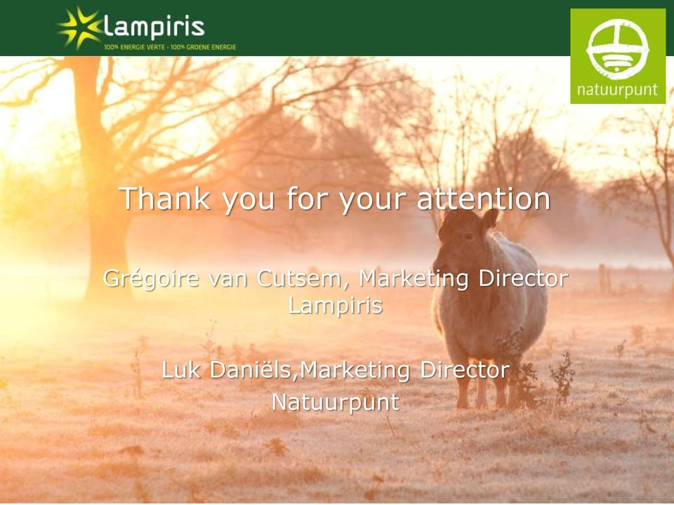 Marketing Director Lampiris