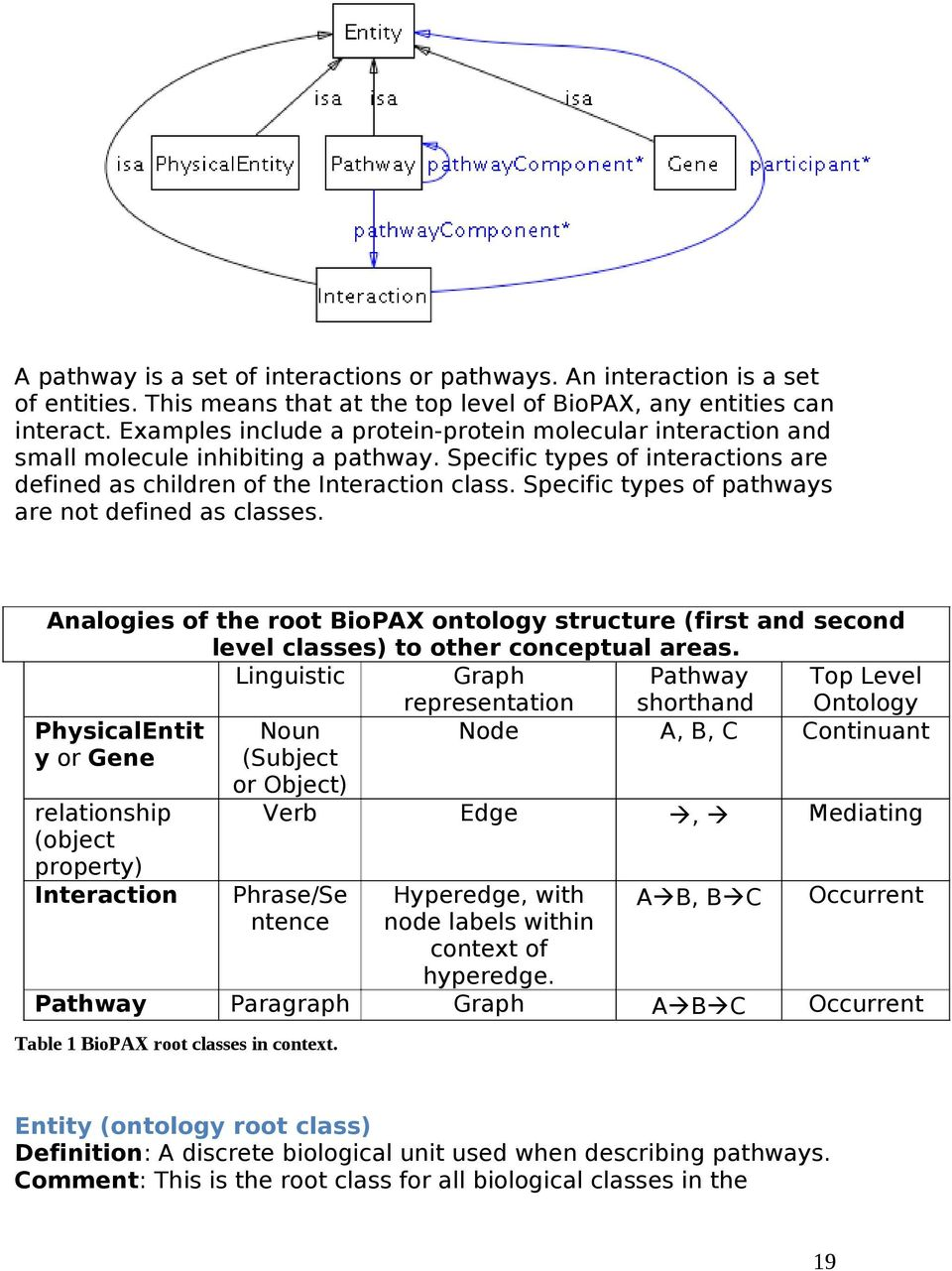 Specific types of pathways are not defined as classes. Analogies of the root BioPAX ontology structure (first and second level classes) to other conceptual areas.
