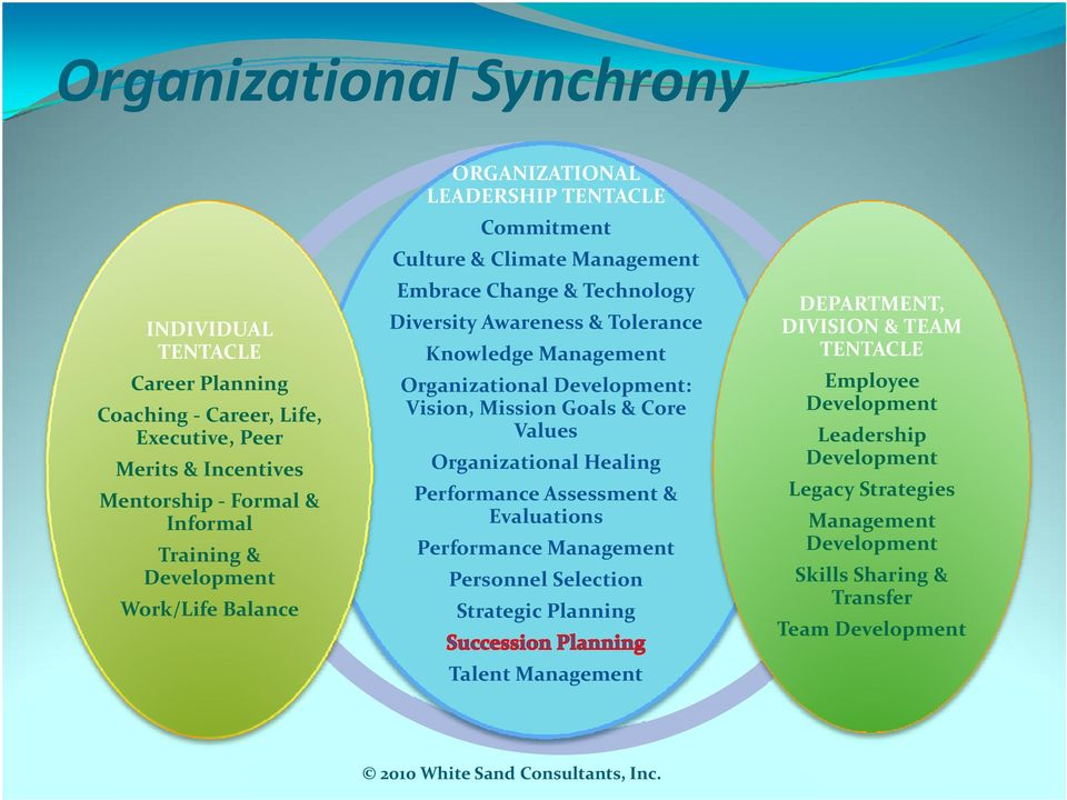 Organizational Development: Vision, Mission Goals & Core Values Organizational Healing Performance Assessment & Evaluations Performance Management Personnel Selection Strategic