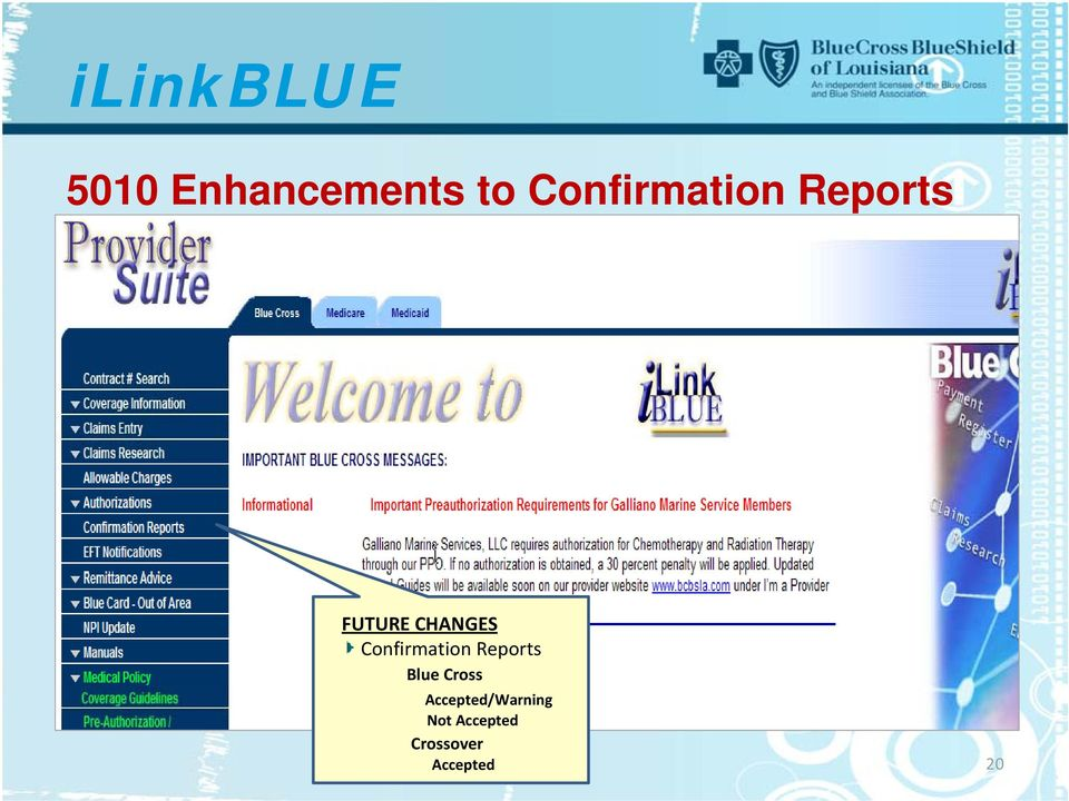 Confirmation Reports Blue Cross