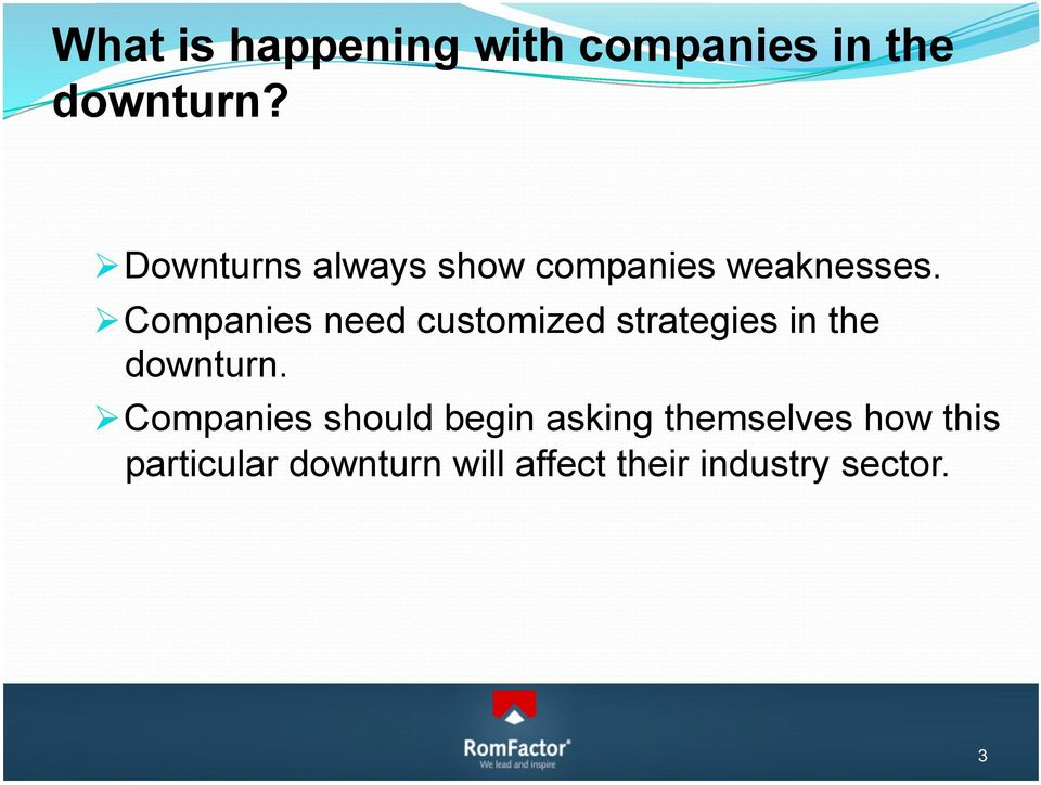 Companies need customized strategies in the downturn.