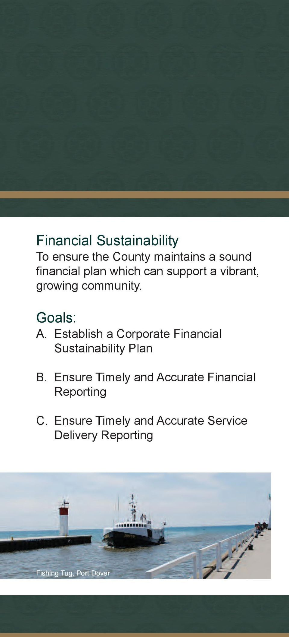 Establish a Corporate Financial Sustainability Plan B.