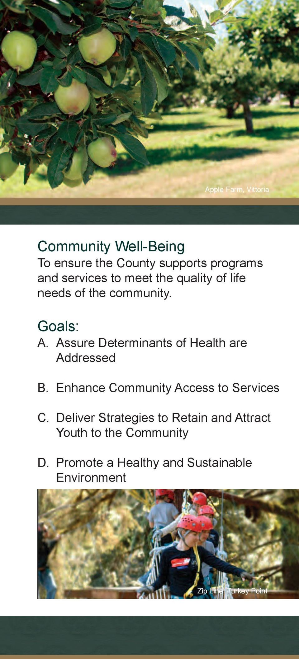 Assure Determinants of Health are Addressed B. Enhance Community Access to Services C.