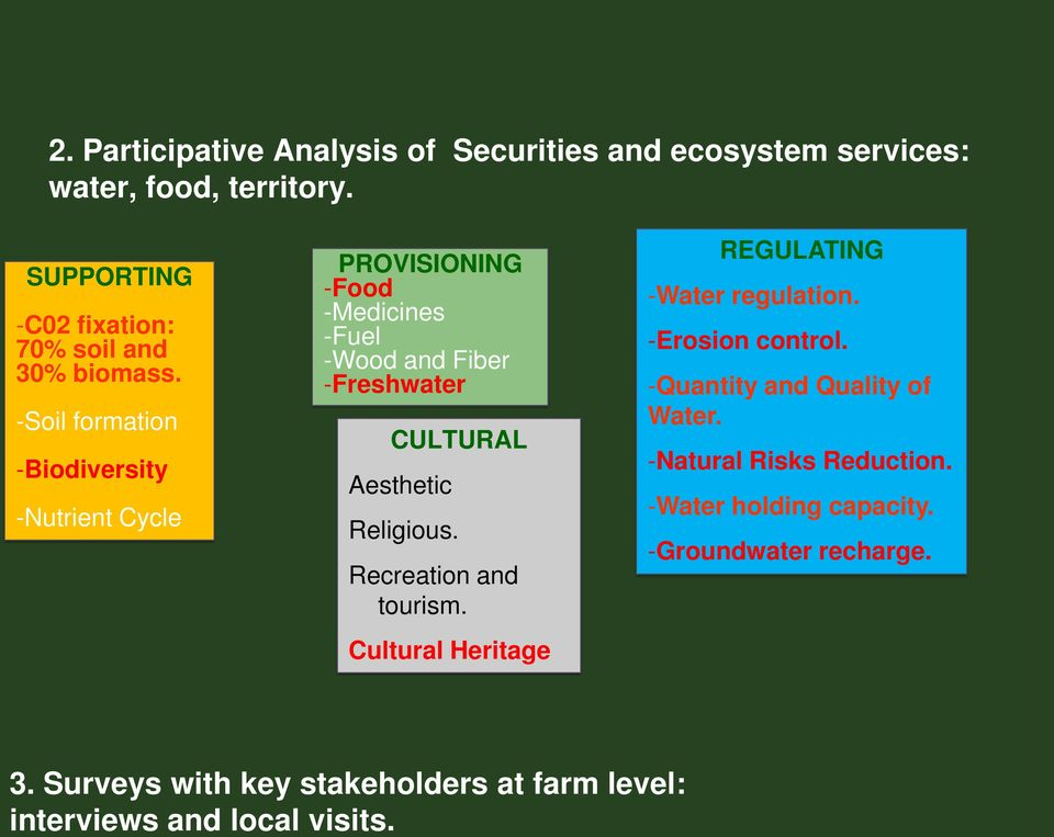 -Soil formation -Biodiversity -Nutrient Cycle PROVISIONING -Food -Medicines -Fuel -Wood and Fiber -Freshwater CULTURAL Aesthetic