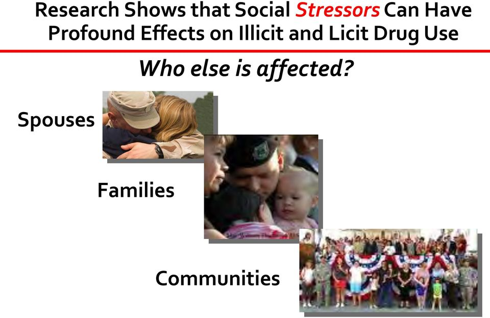 on Illicit and Licit Drug Use