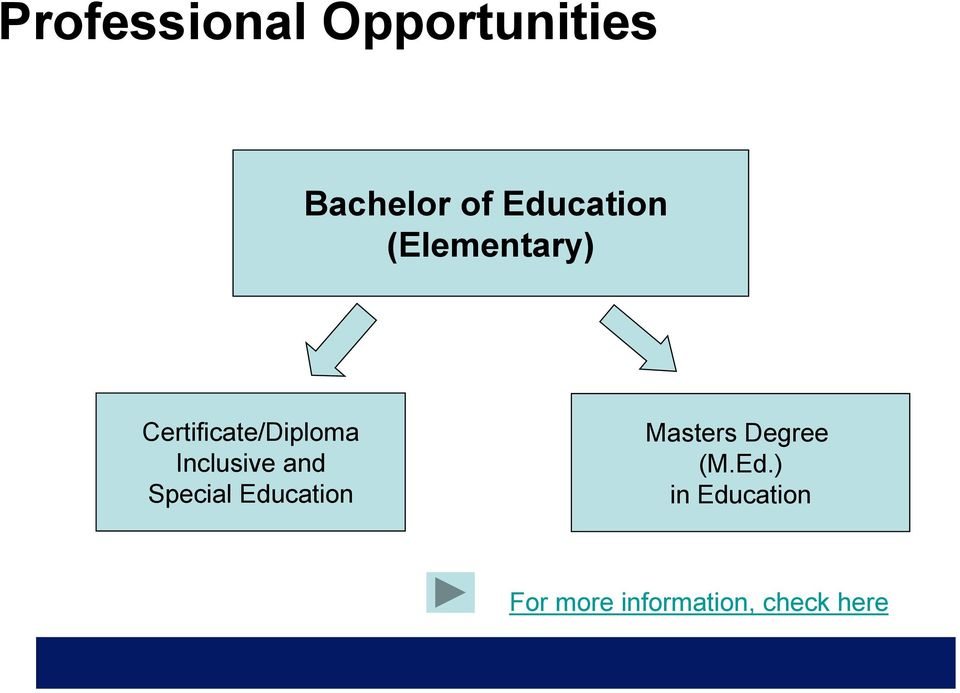 Inclusive and Special Education Masters