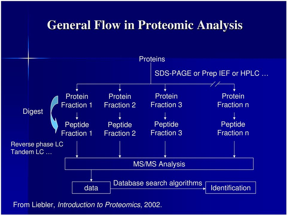 Fraction 2 Protein Fraction 3 Peptide Fraction 3 MS/MS Analysis Database search algorithms