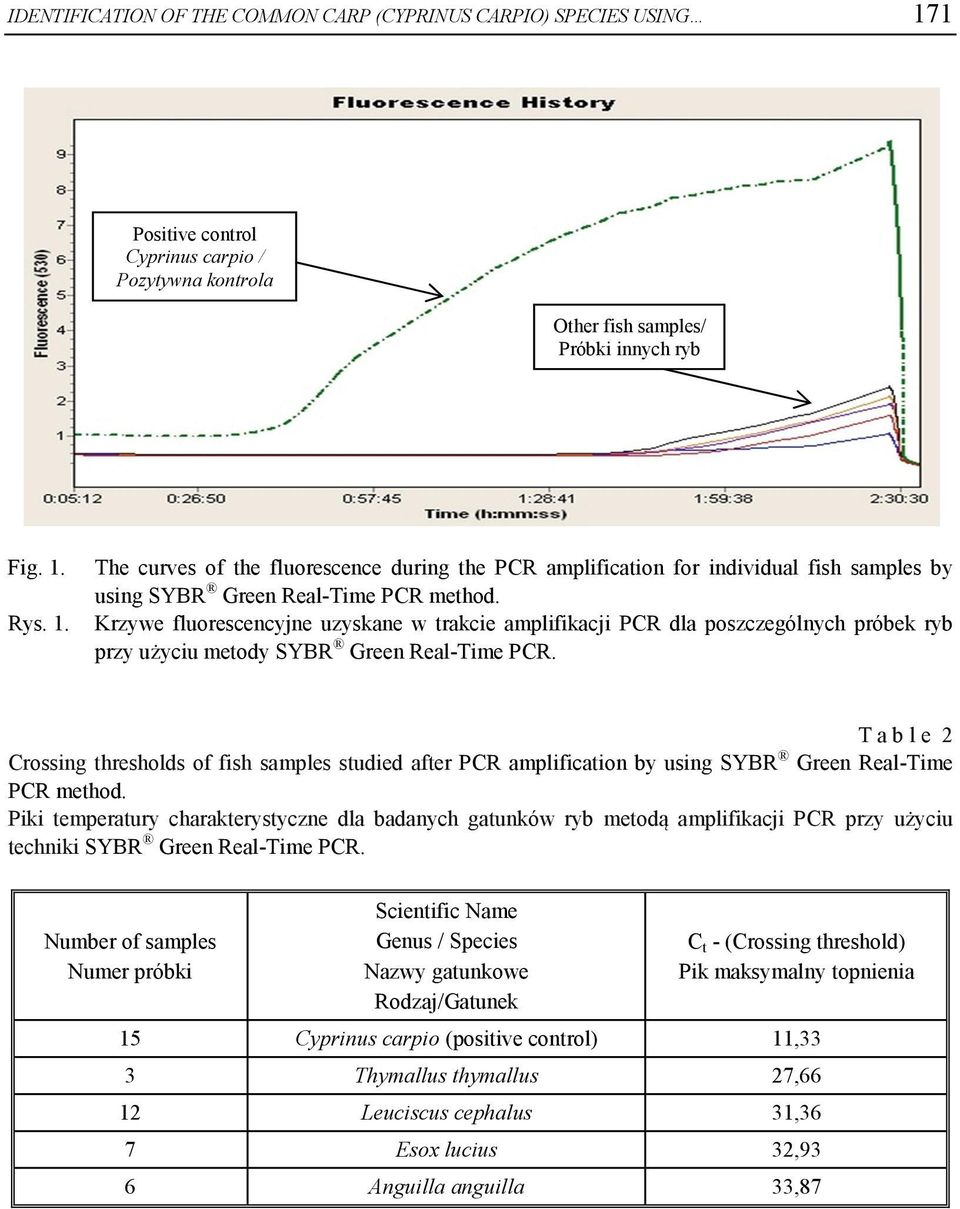 T a b l e 2 Crossing thresholds of fish samples studied after PCR amplification by using SYBR Green Real-Time PCR method.