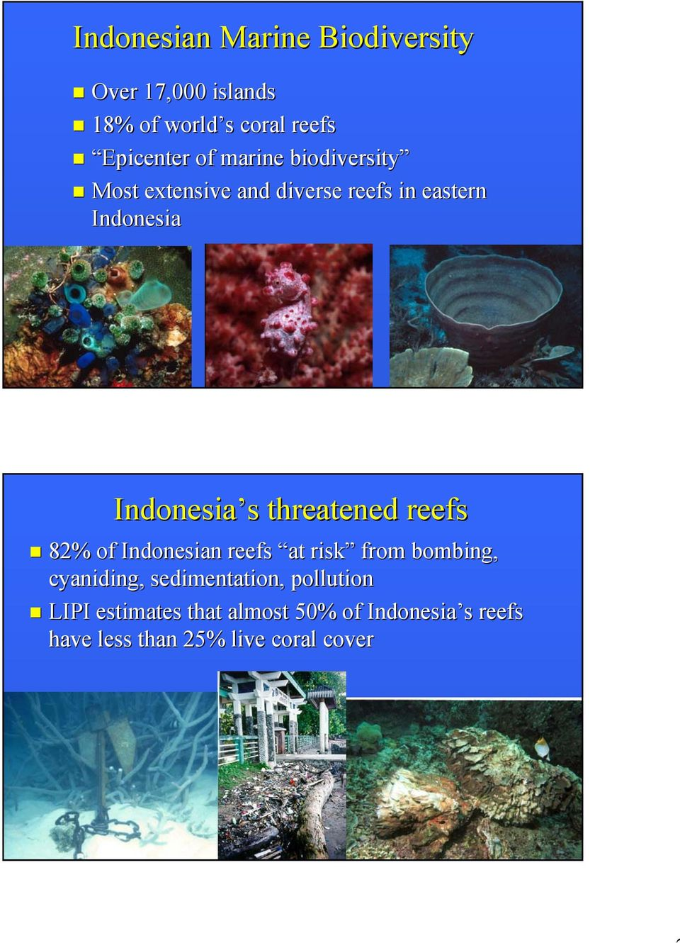 threatened reefs 82% of Indonesian reefs at risk from bombing, cyaniding, sedimentation,