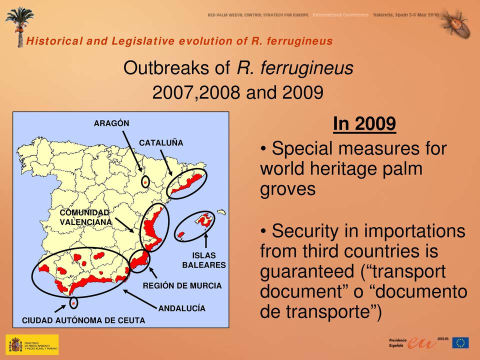 In 2009 Special measures for world heritage palm groves COMUNIDAD VALENCIANA.