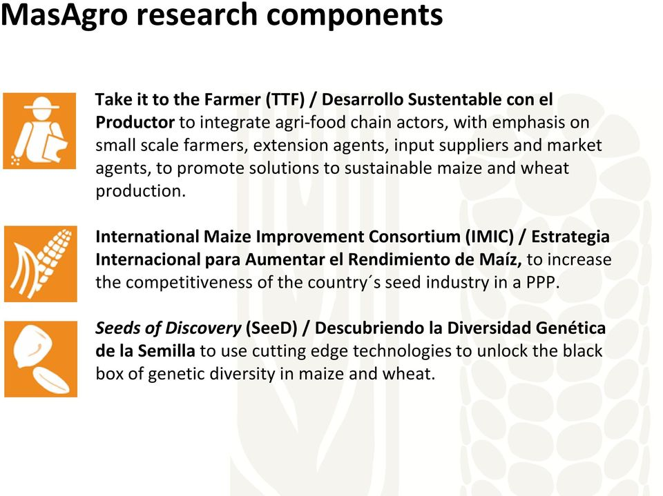 International Maize Improvement Consortium (IMIC) / Estrategia Internacional para Aumentar el Rendimiento de Maíz, to increase the competitiveness of the country s