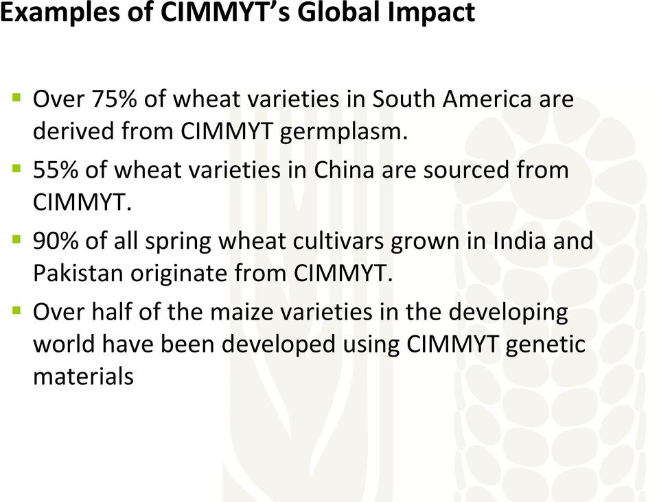 90% of all spring wheat cultivars grown in India and Pakistan originate from CIMMYT.