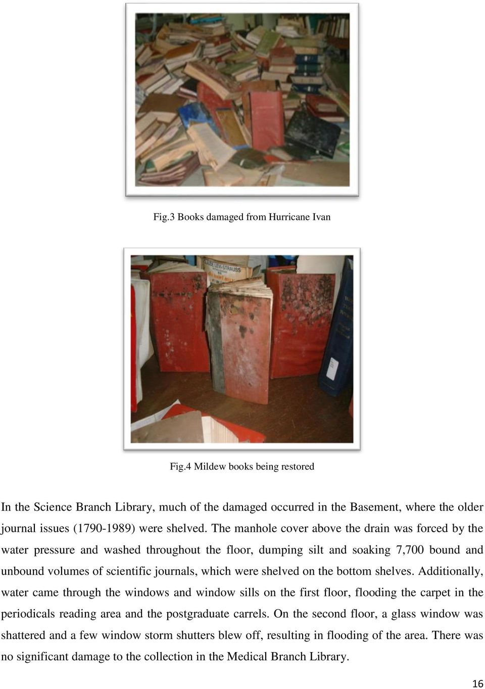 The manhole cover above the drain was forced by the water pressure and washed throughout the floor, dumping silt and soaking 7,700 bound and unbound volumes of scientific journals, which were shelved