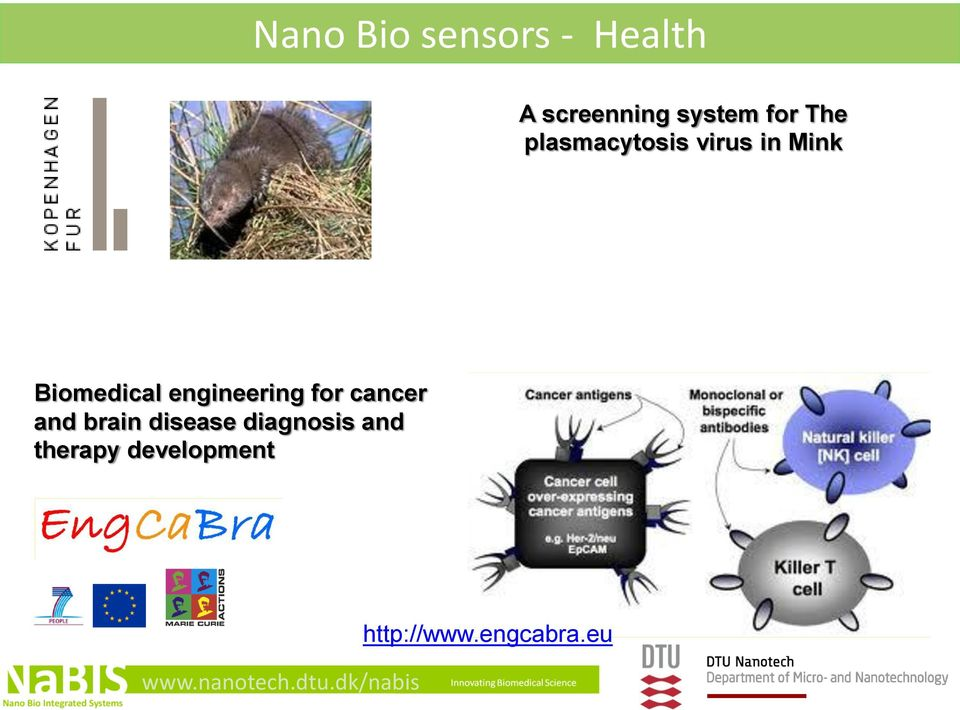 engineering for cancer and brain disease