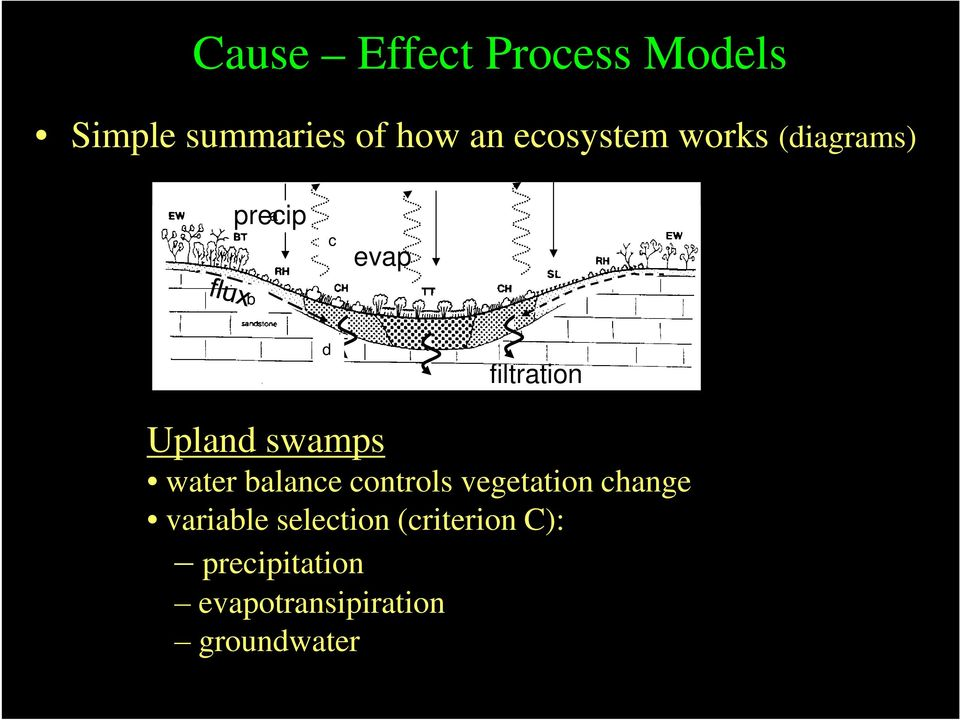 Upland swamps water balance controls vegetation change