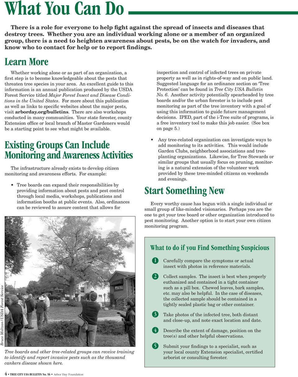 report findings. Learn More Whether working alone or as part of an organization, a first step is to become knowledgeable about the pests that threaten tree species in your area.