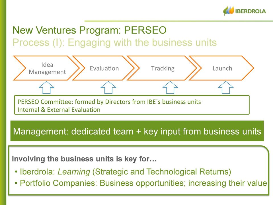 Management: dedicated team + key input from business units Involving the business units is key for Iberdrola: