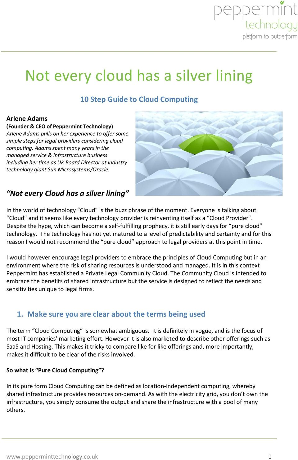10 Step Guide to Cloud Computing Not every Cloud has a silver lining In the world of technology Cloud is the buzz phrase of the moment.