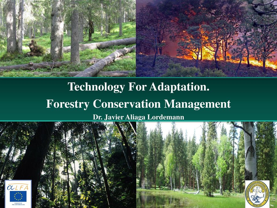 Forestry Conservation