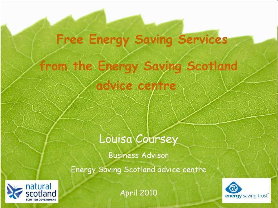 Louisa Coursey Business Advisor  April