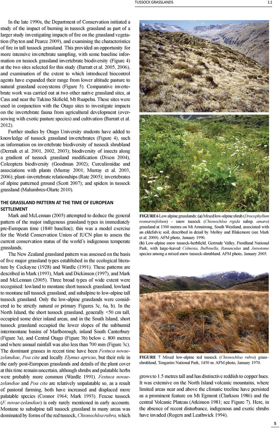 (Payton and Pearce 2009), and examining the characteristics of fire in tall tussock grassland.