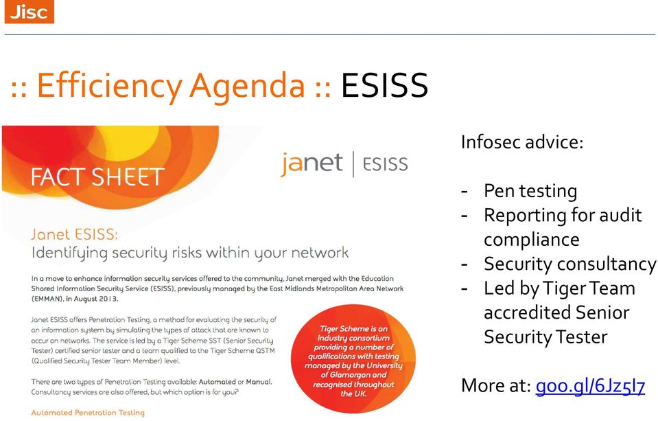 Security consultancy - Led by Tiger Team