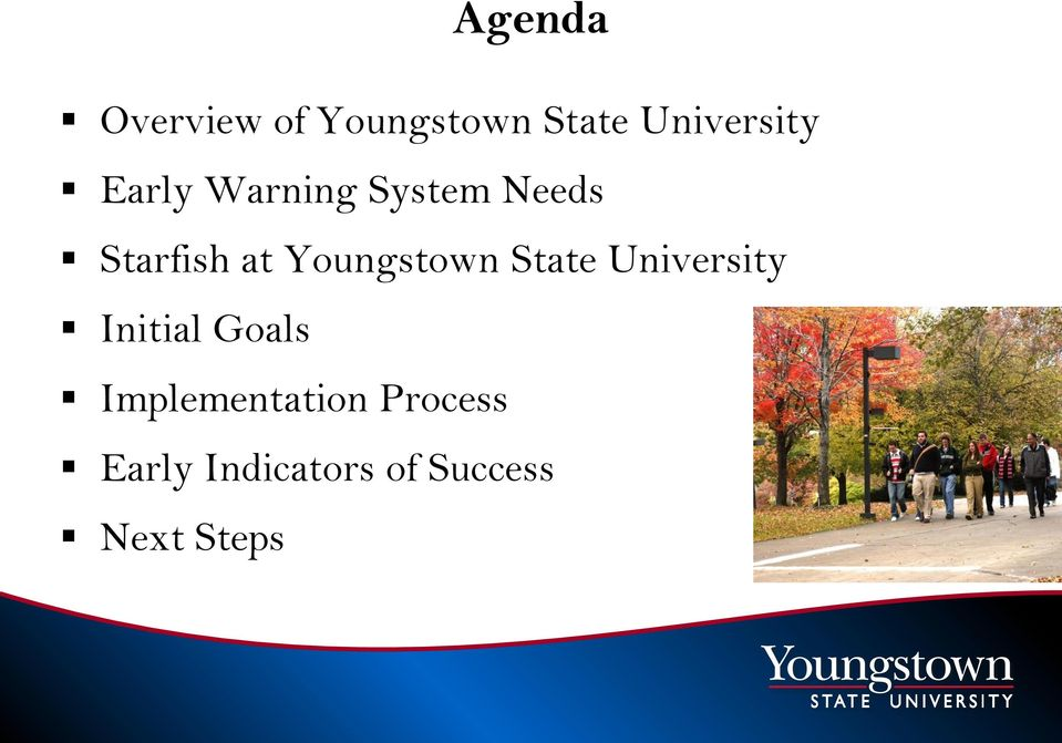 Youngstown State University Initial Goals
