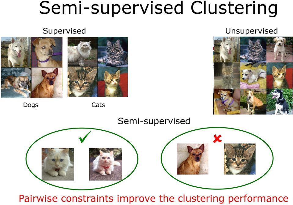 Cats Semi-supervised Pairwise
