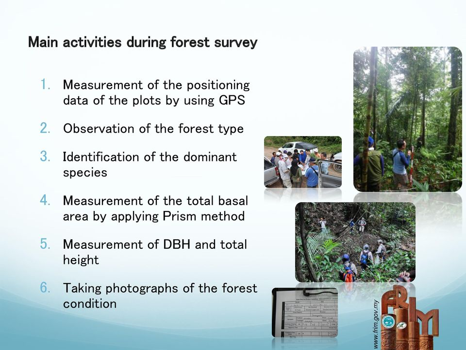 Observation of the forest type 3. Identification of the dominant species 4.