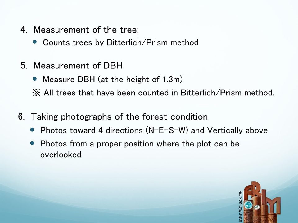 3m) All trees that have been counted in Bitterlich/Prism method. 6.