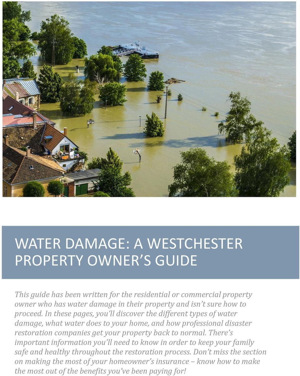 In these pages, you ll discover the different types of water damage, what water does to your home, and how professional disaster restoration companies get your