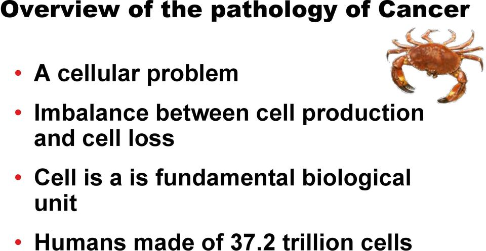 production and cell loss Cell is a is