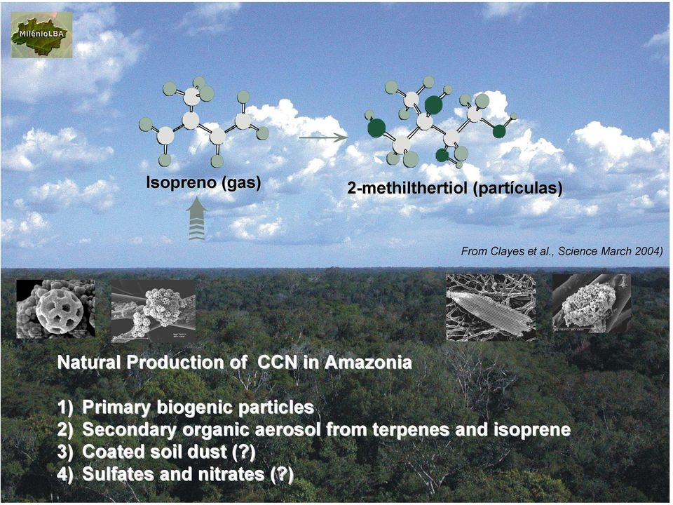 Primary biogenic particles 2) Secondary organic aerosol from
